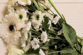 Коллекция Белые цветы