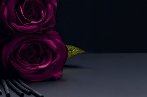 ROSE OUD Luxury Collection